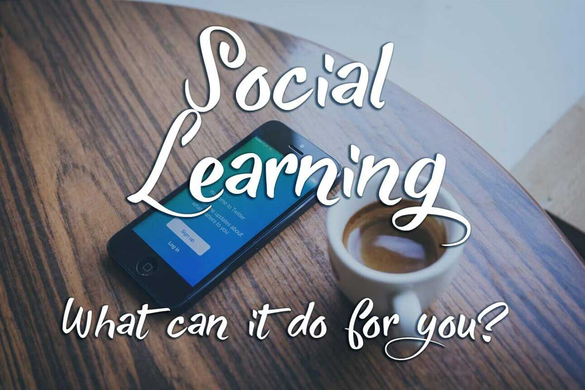 What Makes Social Learning so Interesting?