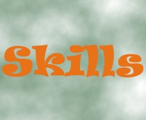 What is Skills Management?